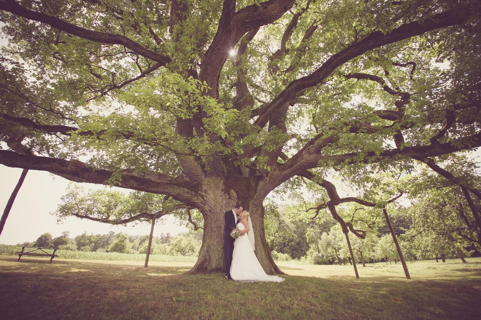 Hochzeit_033